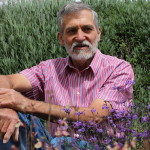 John Fisher - breeder of Salvia Love and Wishes
